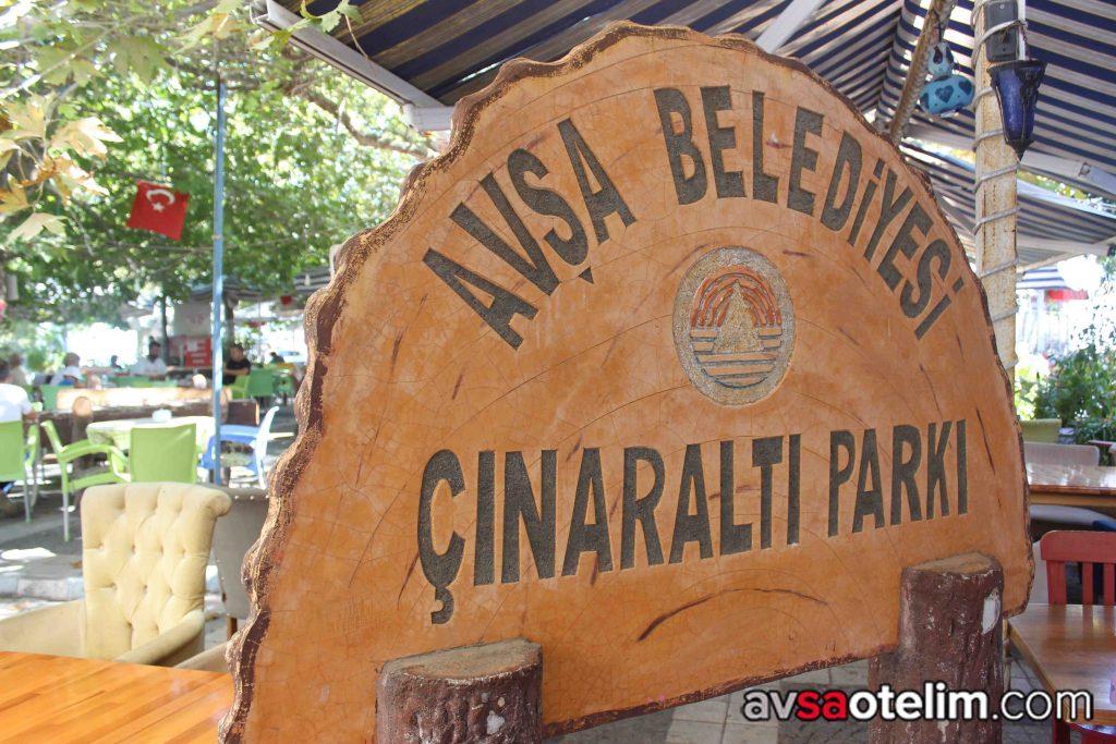Avşa Adası Çınar Altı Çay Bahçesi