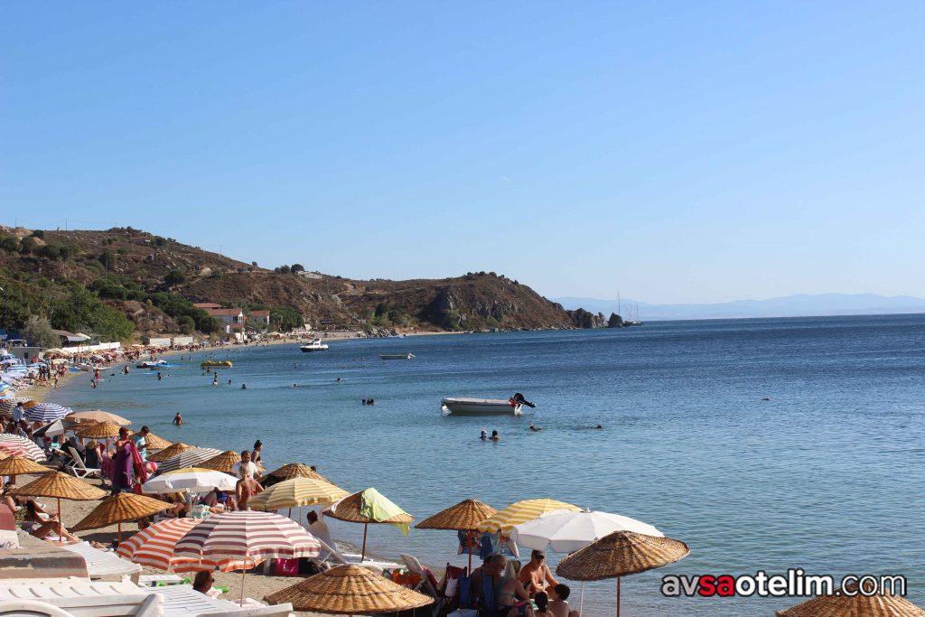 Avşa Adası Çınar Koyu Plajı
